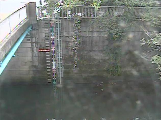 神田川南小滝橋水位観測所ライブカメラは、東京都新宿区北新宿の南小滝橋水位観測所に設置された神田川が見えるライブカメラです。