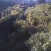 梅田川神明橋ライブカメラ(神奈川県横浜市緑区)