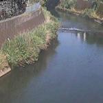 帷子川宮崎橋ライブカメラ(神奈川県横浜市保土ケ谷区)