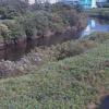 鶴見川落合橋ライブカメラ(神奈川県横浜市緑区)