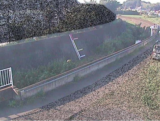 大熊川大竹上橋ライブカメラは、神奈川県横浜市港北区の大竹上橋に設置された大熊川が見えるライブカメラです。