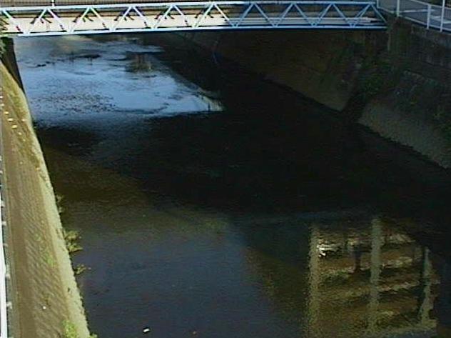 矢上川中吉橋ライブカメラは、神奈川県川崎市中原区の中吉橋に設置された矢上川が見えるライブカメラです。
