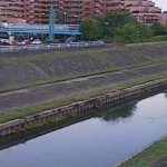 柏尾川元町橋ライブカメラ(神奈川県横浜市戸塚区)