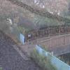 平瀬川嶋田人道橋ライブカメラ(神奈川県川崎市宮前区)