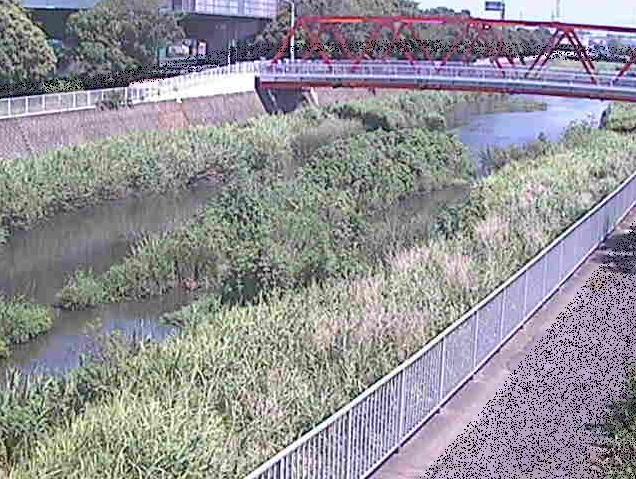 小出川新鶴嶺橋ライブカメラは、神奈川県茅ヶ崎市下町屋の新鶴嶺橋に設置された小出川が見えるライブカメラです。