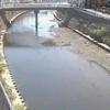 平作川根岸歩道橋ライブカメラ(神奈川県横須賀市根岸町)