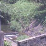 下山川星山橋ライブカメラ(神奈川県葉山町下山口)
