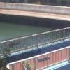 鷹取川鷹取川人道橋ライブカメラ(神奈川県横須賀市追浜本町)