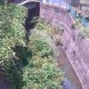 松越川新佐島橋ライブカメラ(神奈川県横須賀市長坂)