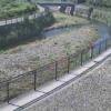 引地川福寿橋ライブカメラ(神奈川県大和市福田)