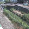 永池川永池橋ライブカメラ(神奈川県海老名市上河内)