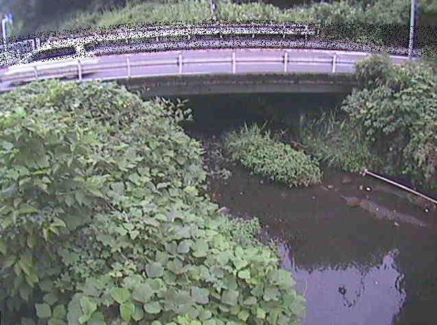 洞川新下原橋ライブカメラは、神奈川県南足柄市竹松の新下原橋に設置された洞川が見えるライブカメラです。