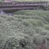 内川尾崎橋ライブカメラ(神奈川県南足柄市内山)