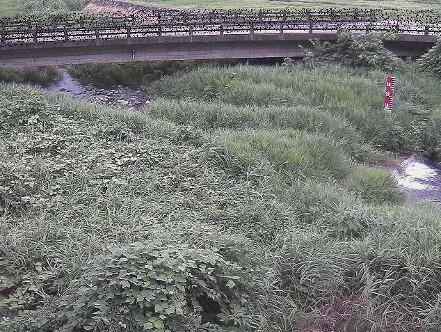 内川尾崎橋ライブカメラは、神奈川県南足柄市内山の尾崎橋に設置された内川が見えるライブカメラです。