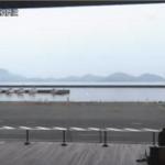 海の駅御食国若狭おばま食文化館第2ライブカメラ(福井県小浜市川崎)