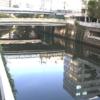 目黒川市場橋ライブカメラ(東京都品川区西五反田)