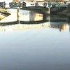 新河岸川平成橋ライブカメラ(東京都板橋区舟渡)