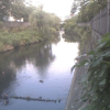 いたち川大いたち橋ライブカメラ(神奈川県横浜市栄区)