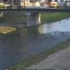 本明川裏山水位観測所ライブカメラ(長崎県諫早市天満町)