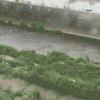 大原川音羽町ライブカメラ(岐阜県多治見市音羽町)