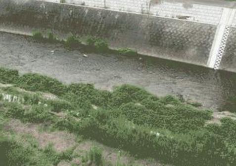 大原川音羽町ライブカメラは、岐阜県多治見市音羽町の音羽町に設置された大原川が見えるライブカメラです。