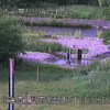 無加川北光社観測所ライブカメラ(北海道北見市常磐町)