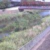 小出川新鶴嶺橋ライブカメラ(神奈川県茅ヶ崎市下町屋)