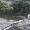 河内川平山橋ライブカメラ(神奈川県山北町川西)