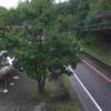 国道152号姫木コミュニティセンターライブカメラ(長野県長和町大門)