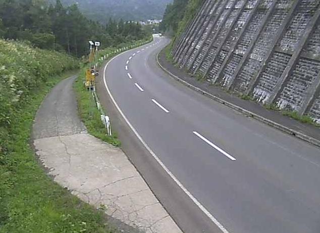 国道117号虫生ライブカメラは、長野県野沢温泉村の虫生に設置された国道117号が見えるライブカメラです。