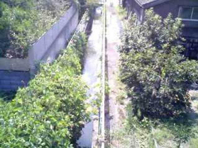 西大崎しおから川ライブカメラは、新潟県三条市の西大崎に設置されたしおから川が見えるライブカメラです。