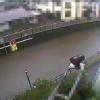 善福寺川丸山橋ライブカメラ(東京都杉並区上荻)