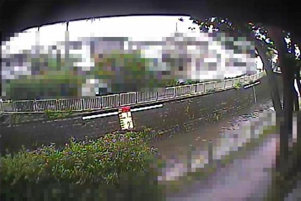 神田川向陽橋ライブカメラは、の向陽橋に設置された神田川が見えるライブカメラです。更新は5分間隔で、独自配信による静止画のライブ映像配信です。杉