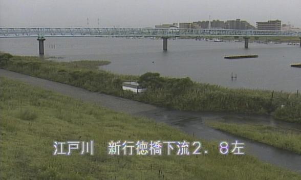 江戸川新行徳橋下流ライブカメラは、千葉県市川市田尻の新行徳橋下流に設置された江戸川が見えるライブカメラです。