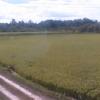 中道農園ライブカメラ(滋賀県野洲市比留田)