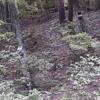 福島市小鳥の森ライブカメラ(福島県福島市山口)