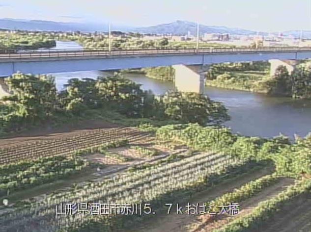 赤川おばこ大橋ライブカメラは、山形県三川町猪子のおばこ大橋に設置された赤川が見えるライブカメラです。