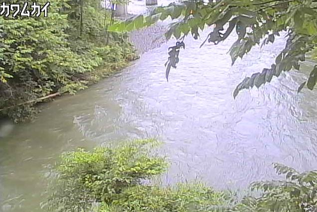 馬淵川川向ライブカメラは、岩手県一戸町小鳥谷の川向に設置された馬淵川が見えるライブカメラです。