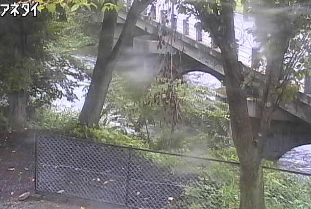 馬淵川姉帯薬師橋ライブカメラは、岩手県一戸町姉帯の姉帯薬師橋に設置された馬淵川・岩手県道15号一戸葛巻線が見えるライブカメラです。