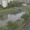 坂川大谷口新田水位観測所ライブカメラ(千葉県松戸市新松戸)