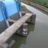 牛津川川越排水機場ライブカメラ(佐賀県小城市芦刈町)