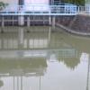 牛津川一本松排水機場ライブカメラ(佐賀県小城市芦刈町)