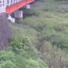 津田川弁天橋ライブカメラ(香川県さぬき市大川町)
