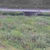 鴨部川井戸川橋ライブカメラ(香川県さぬき市昭和)