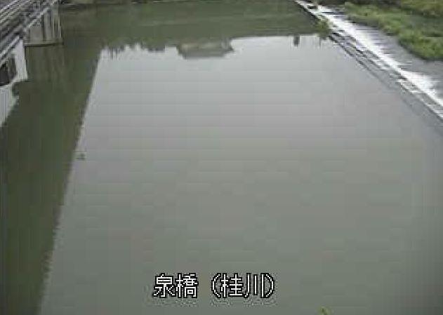 桂川泉橋ライブカメラは、大分県豊後高田市美和の泉橋に設置された桂川が見えるライブカメラです。
