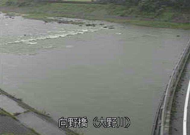 大野川向野橋ライブカメラは、大分県豊後大野市三重町の向野橋に設置された大野川が見えるライブカメラです。