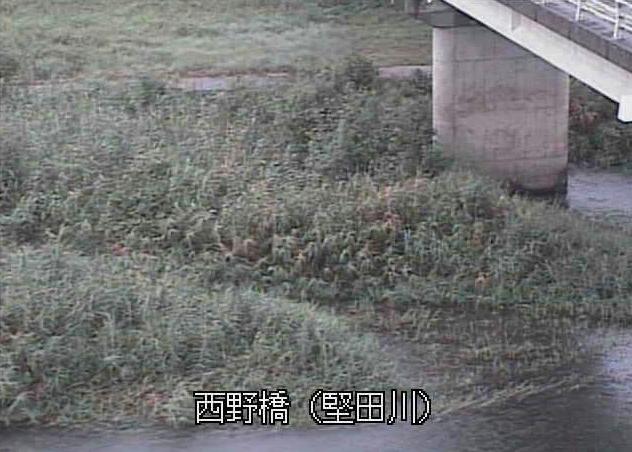 堅田川西野橋ライブカメラは、大分県佐伯市堅田の西野橋に設置された堅田川が見えるライブカメラです。