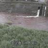 大野川中尾橋ライブカメラ(大分県竹田市吉田)
