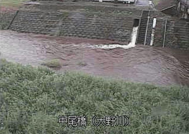 大野川中尾橋ライブカメラは、大分県竹田市吉田の中尾橋に設置された大野川が見えるライブカメラです。