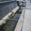 新湊川夢野橋ライブカメラ(兵庫県神戸市兵庫区)